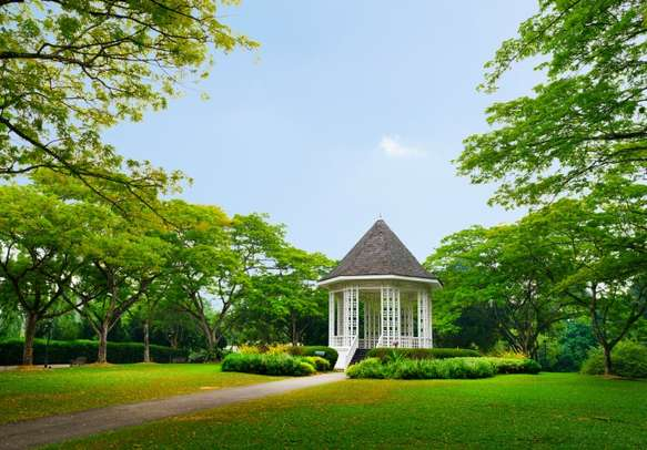 The nature's beauty invites you to Singapore