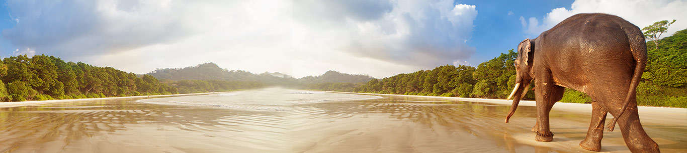 The scenic Andaman beach