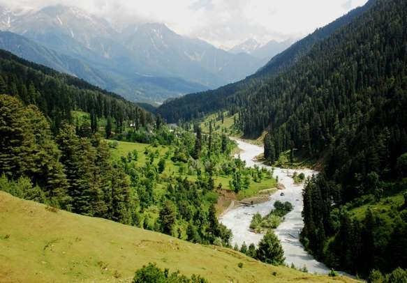 The misty meadows add to the beauty of Pahalgam.