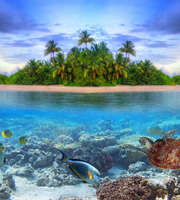 Maldives Family Tour Package For 4 Nights 5 Days