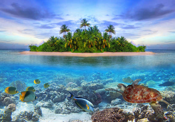 Maldives promises an indelible holiday experience.