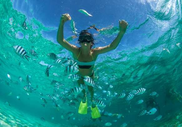 Enjoy activities like snorkeling, scubadiving and other activities