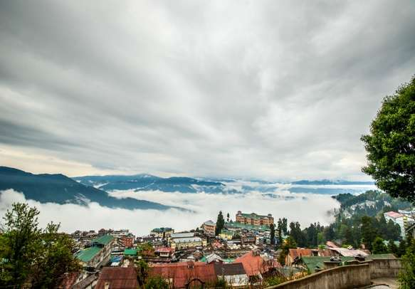 Delight in the beauty of Darjeeling during your family trip