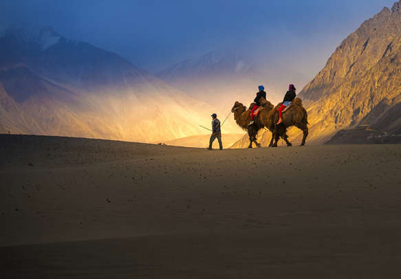 Camel Safari is one of the most popular tourist activity in Ladakh