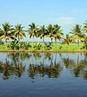 Alleppey Tour Package For 1 Night 2 Days