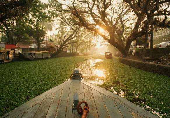 Golden sunset on Alleppey backwaters