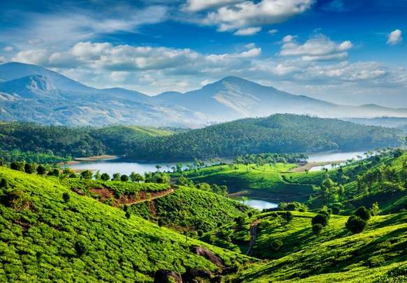 Tea plantations and Muthirappuzhayar River in hills near Munnar.