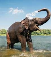 Captivating Kerala Honeymoon Package