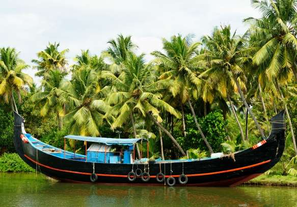 The backwaters of Kerala is an ideal place for a family