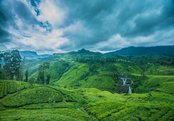 Sri Lanka will fill your hearts with wonder