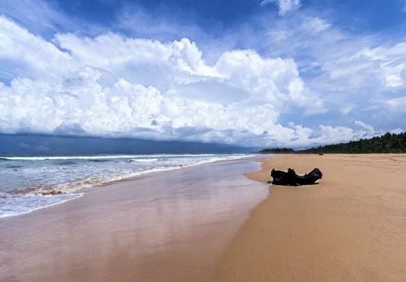 Have a great time in Sri Lanka