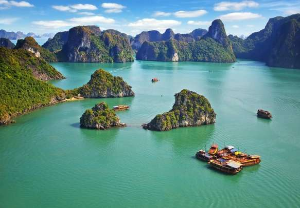 The beautiful environs of Vietnam will make you fall in love with it