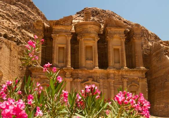 Oleander bush and the facade of the Monastery in Petra