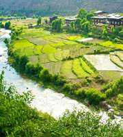 Breathtaking Bhutan Honeymoon Package