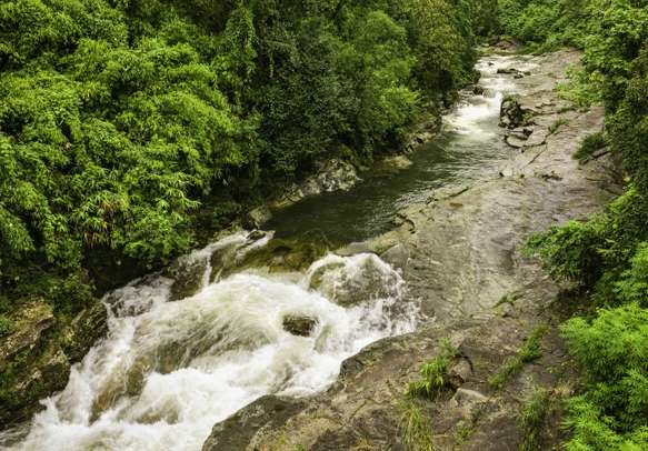 A river flows through the thick vegetation and deep valleys of the Khasi Hills