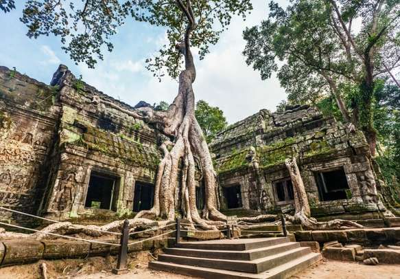 Classical picture of Ta Prohm Temple