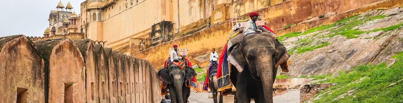 Enjoy a different view as you ride an elephant in Jaipur