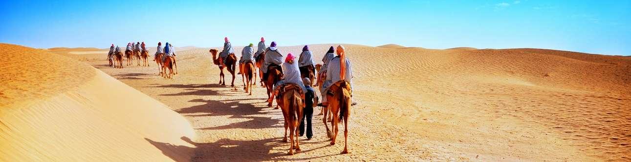 Enjoy a journey into the sand dunes of Jaisalmer on Camel back