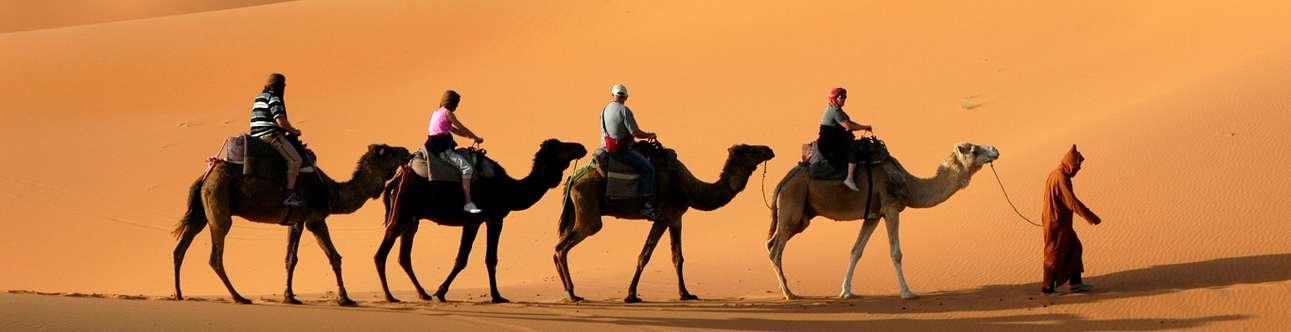 Camel Safari amidst the glorious Sam Sand Dunes