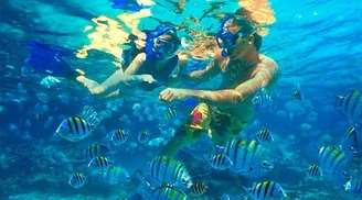 Explore life underwater while enjoying snorkeling in Kovalam