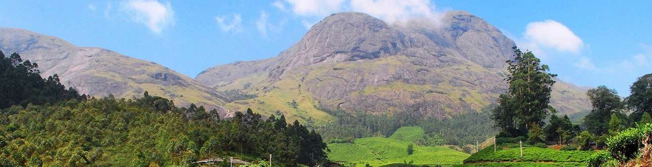 Scale new heights as you trek to the Anamudi Peak In Munnar