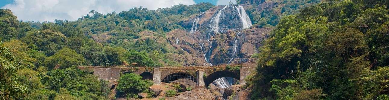 Enjoy a day trip to Dudhsagar Waterfalls