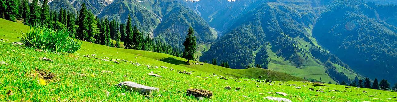 Breathtaking Impression of Nature
