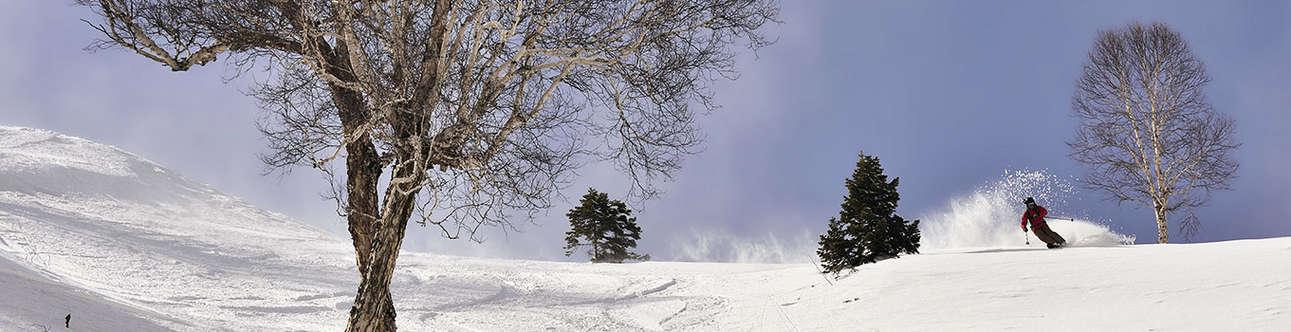 Try Skiing in Kashmir