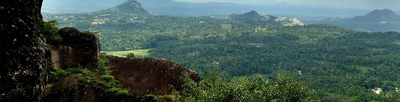 The Edakkal Caves are famous for their wall carvings and exquisite rock formation.