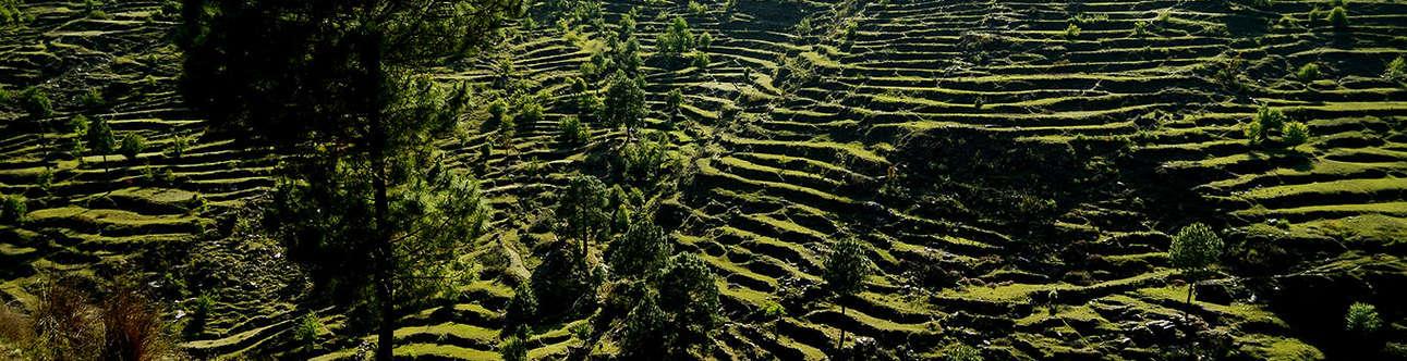 Enjoy trekking at guano hills