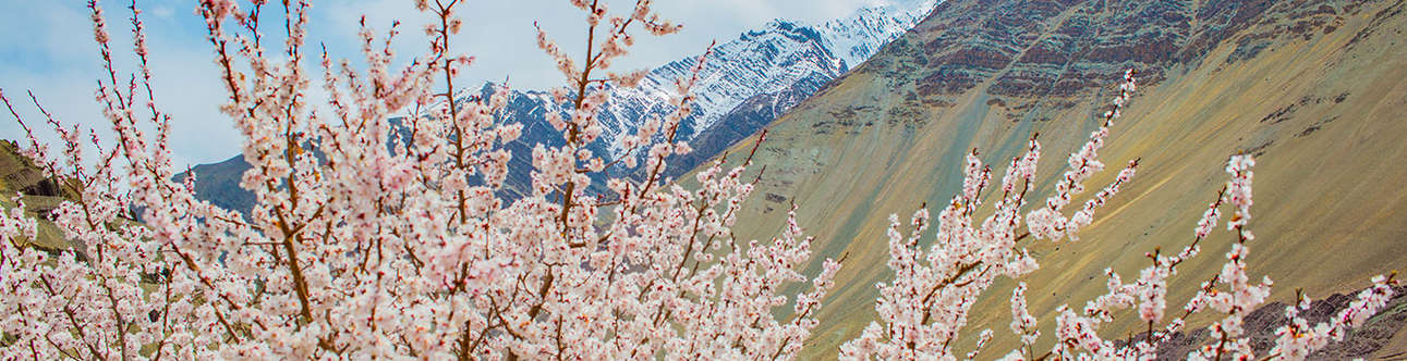 Ladakh is a land of unending naturally beautiful places