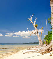 Andaman Tour Package From Lucknow