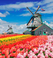 3 Days Tour Package To Amsterdam With Airfare