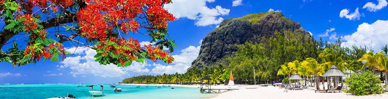 Mauritius is the perfect place to let your hair down