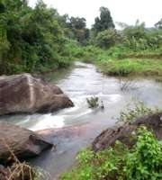 Captivating Coorg Sightseeing Tour Package