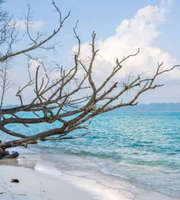 A Blissful Romantic Tour To Andaman Island