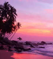 Beachside Romance: Goa Honeymoon Package