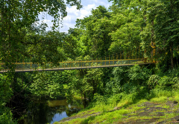 The charming Hanging Bridge in Athirapally invites you