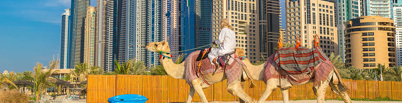 Desert Safaris in Dubai