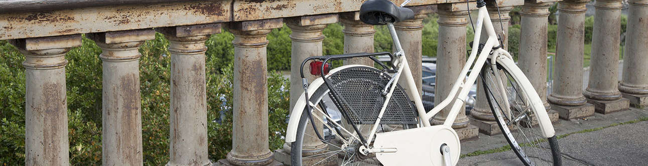 Pedal your way through Florence