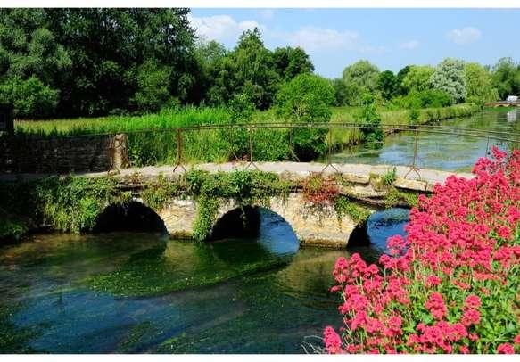 Serene natural beauty to enjoy