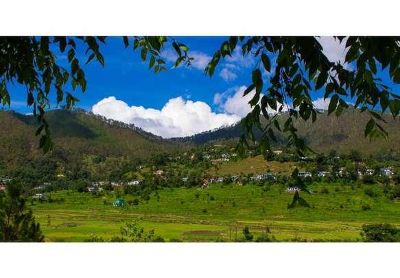 A refreshing holiday to Ranikhet