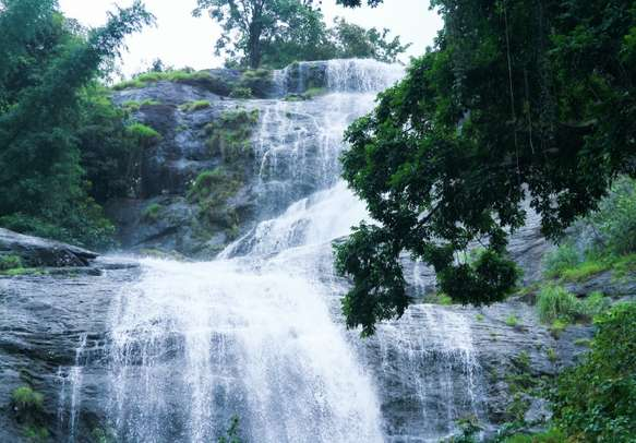 Delight in the view of refreshing waterfall in Munnar