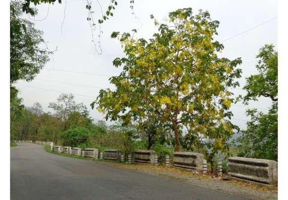 Uttarakhand trip awaits you