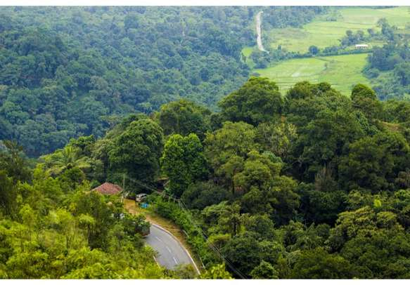Admire the panoramic views of Coorg from Raja's Seat