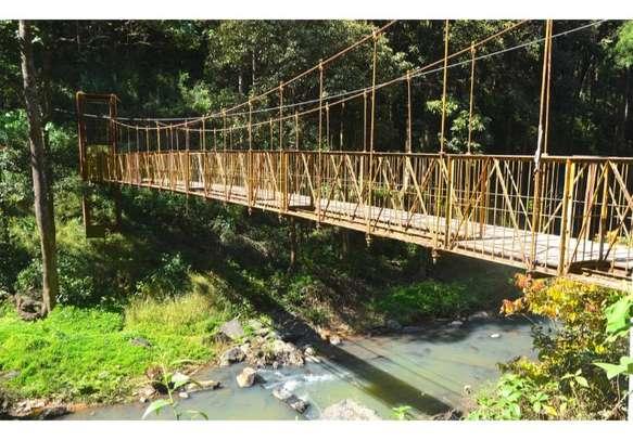 The famous Iron Bridge