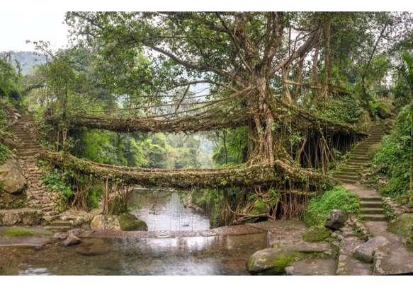 Explore the hidden natural beauty