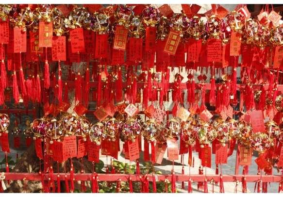 Amazing Macau trip awaits you