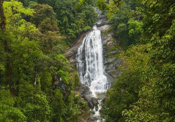Munnar is a great place to start your vacation
