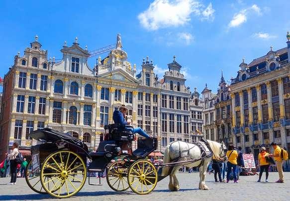 Enjoy sightseeing in Brussels
